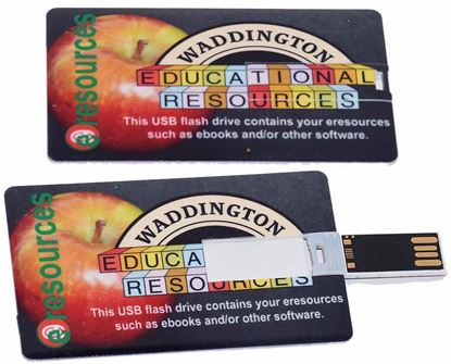 Picture of USB Flash Card